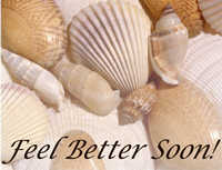 Feel better soon, sea shells card